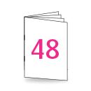 Broschüre DIN Lang, 250/135gm, 48-seitig, Bilderdruck/Naturpapier