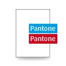 Briefpapier A4, einseitig, 2-farbig Pantone + Pantone
